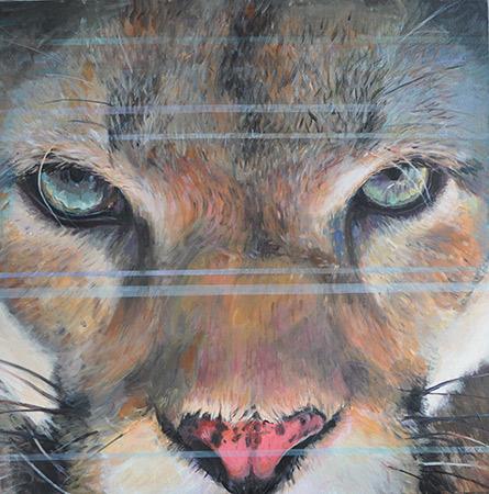 Puma 2009 70x70