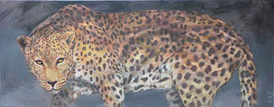 Leopard 2013 40x100